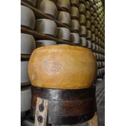 Parmigiano Reggiano DOP, (...