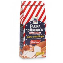 Spadoni Flour d'America...