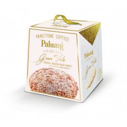 Panettone without candid...