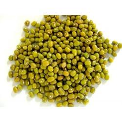 Mongo beans